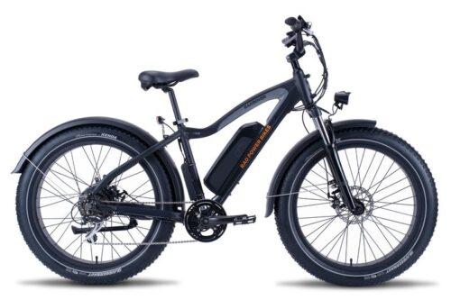 RadRover Electric Bike